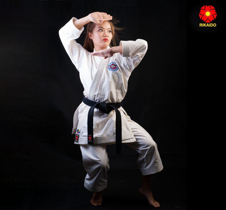 Võ phục karate combo