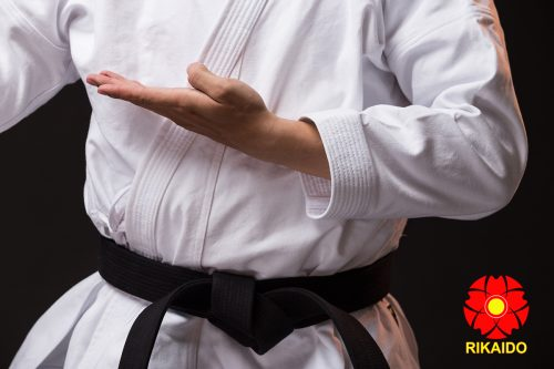 Võ phục karateVõ phục Karate thi đấu kata