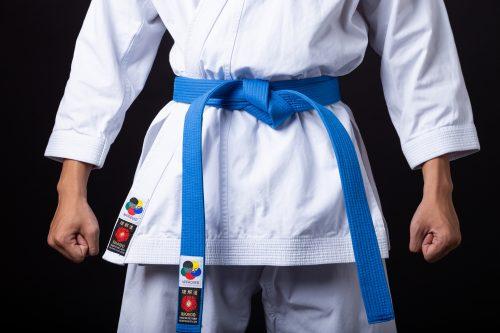 võ phục karate đặc biệt 2