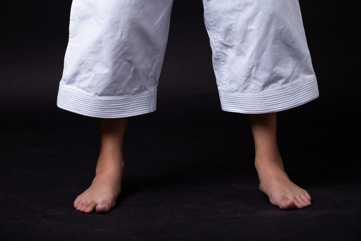 Võ Phục Karate cao cấp 2
