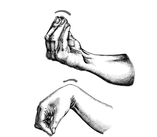 Kakuto là cổ tay uốn cong