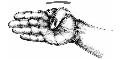 Haito là cạnh bàn tay trong