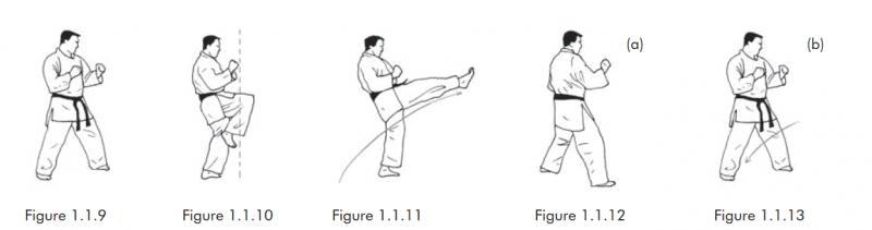 Những hình ảnh này cho thấy việc thực hiện một Cú đá tống trước, với chân đá có thể hạ xuống phía trước hoặc phía sau tùy chọn.