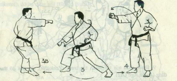 bài quyền số 1 karate