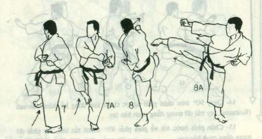 bài quyền số 2 karate